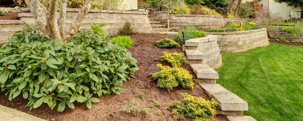 Spring Landscaping Projects to Start Now